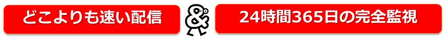どこよりも早い配信&24時間365日の完全監視