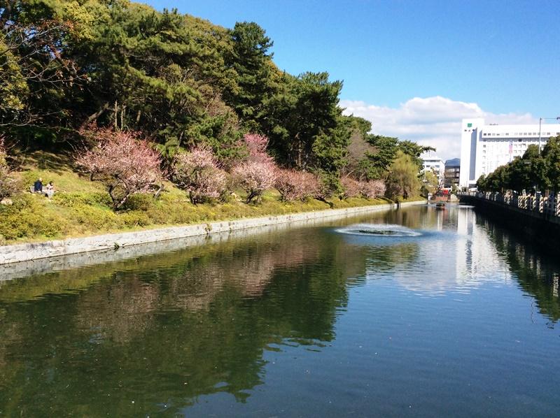 松山城のお堀